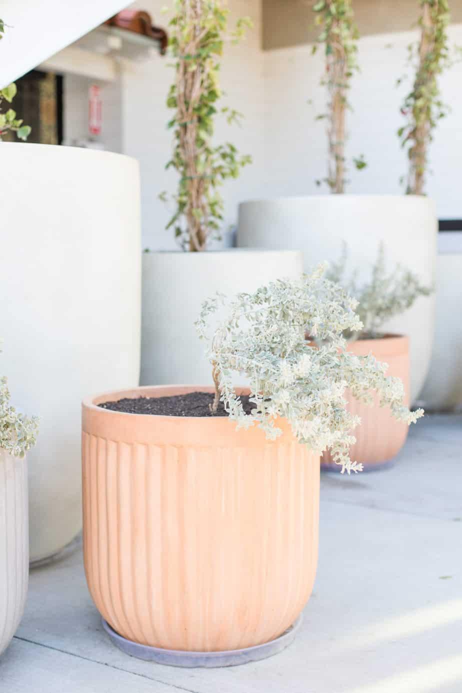 minimalist tips