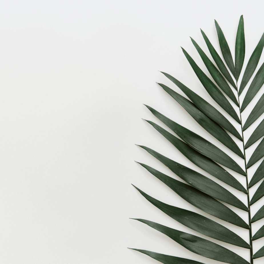 best minimalist blogs